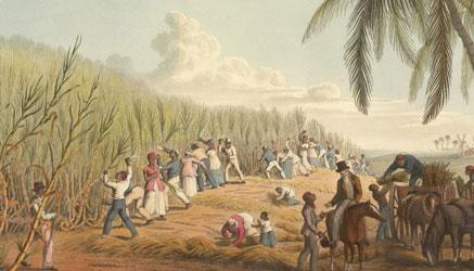 Latar Belakang VOC Mampu Memonopoli Perdagangan Rempah-Rempah