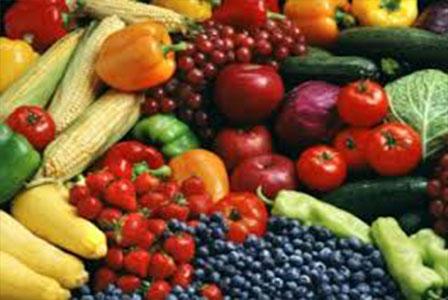 Potensi Dan Pemanfaatan Sumber Daya Pertanian Ptpn X