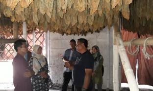 Tim Distanpangan Kabupaten Blitar Kagumi Aktivitas Bisnis Tembakau PTPN X