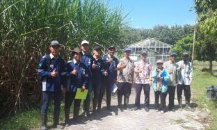 Enero Ikuti Pelatihan Pengamatan Agronomi Tebu