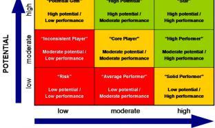 9-Box Model Untuk Pengembangan Potensi dan Kinerja Karyawan